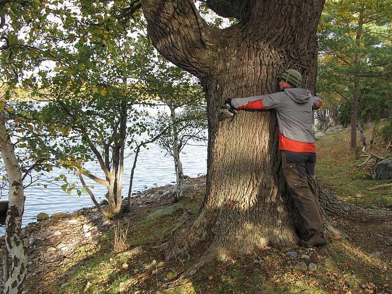 Pia leker trädkramare på Slädö