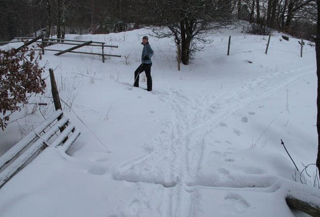 På skidor i går förmiddag, här vid en fallfärdig bro över Rössjöholmsån