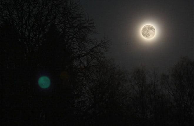 Månen och lite träd