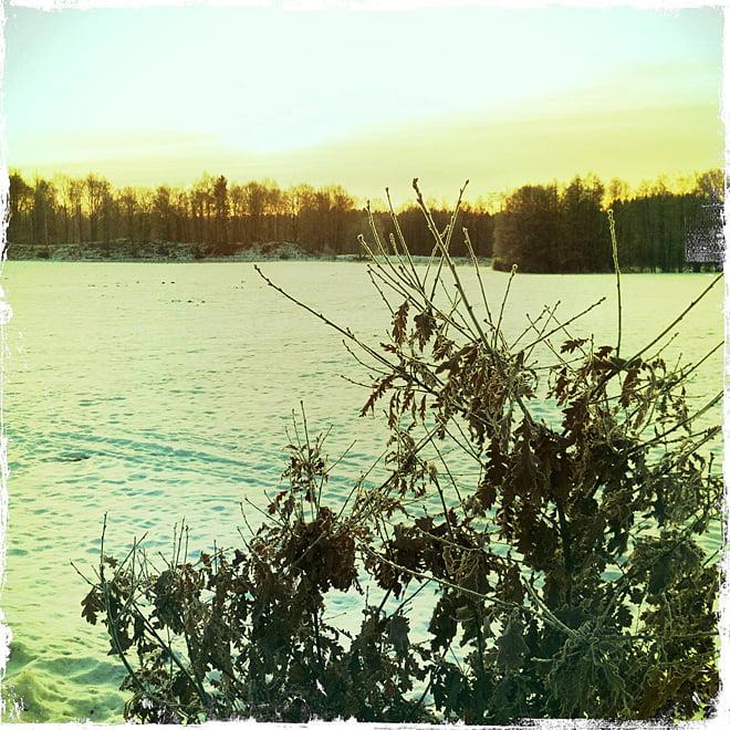 Frostig förmiddag