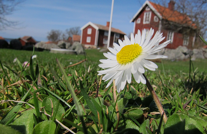 En solig aprildag på Örö är inte heller fel