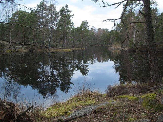 Insjön på Ekö