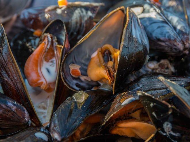 Supersmaskiga musslor - närodlade, kravmärkta och alldeles färska