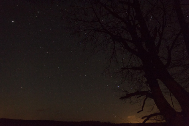 Gott om stjärnor