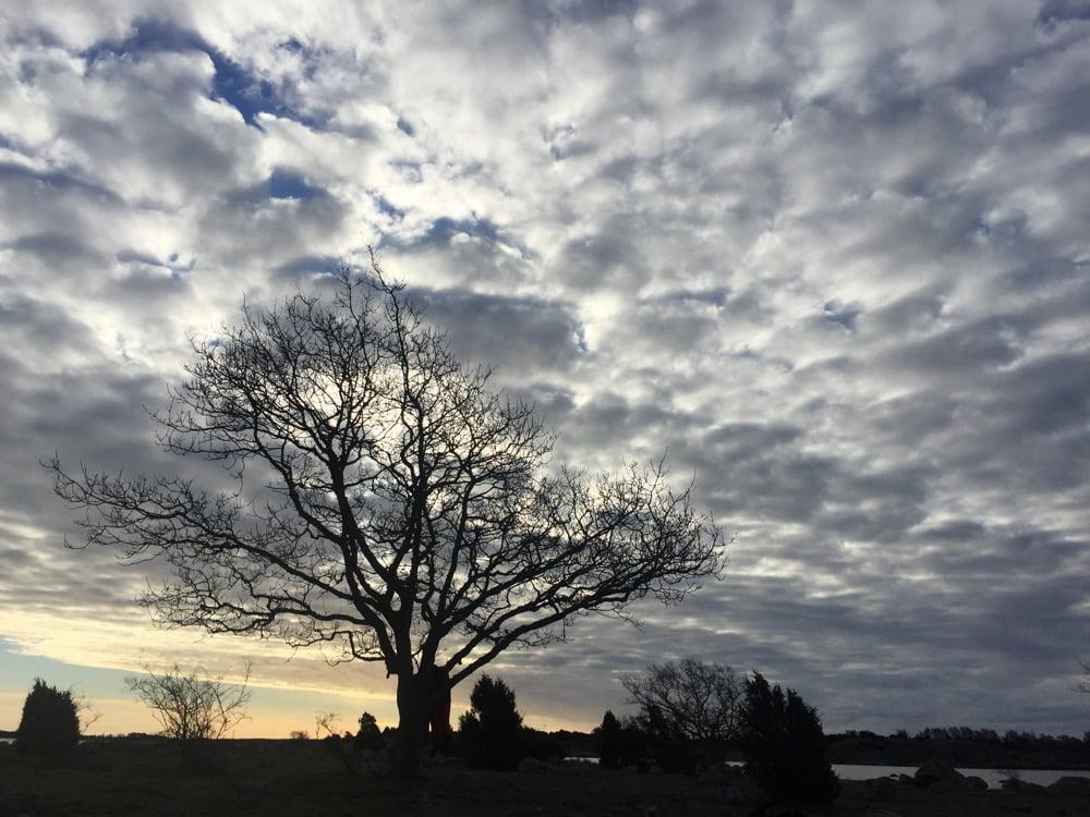 Snygg morgonhimmel