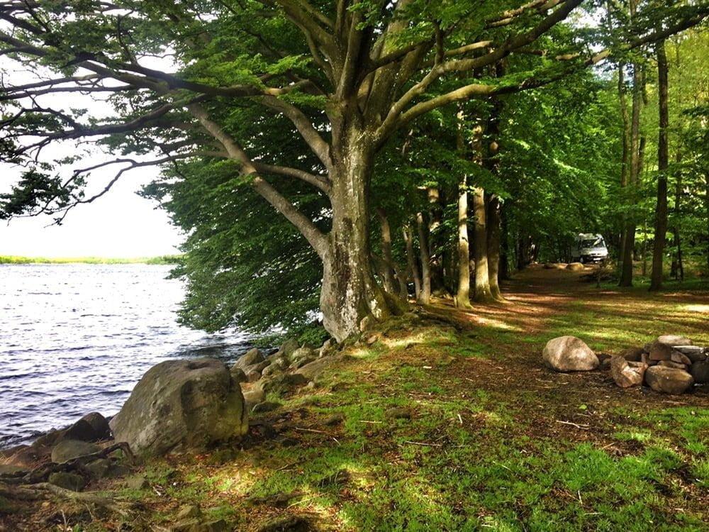 Grönt och sjönära, fin udde med tält och eldmöjlighet