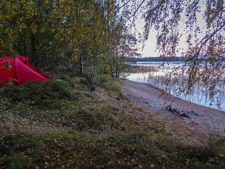 Morgon vid Västersjön