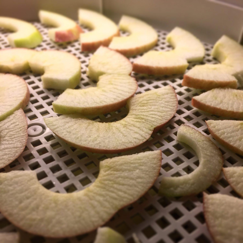 Äppelskivor på gång i torken