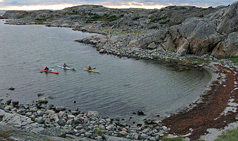 Ett gäng in på väg mot stranden på Rävholmen